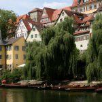 Zielone miasta Polski